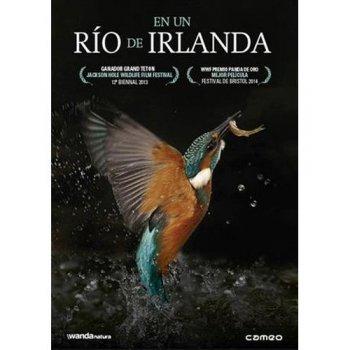 DVD-EN UN RIO DE IRLANDA