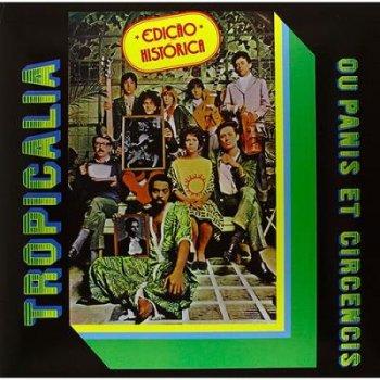 Lp-tropicalia +cd