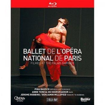 Ballet de l'opera nationa