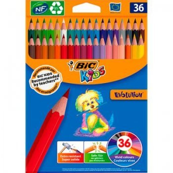 36 lapices colorear evolution 10