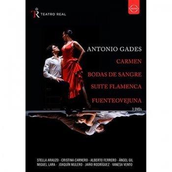 Dvd-spanish dance from the te(3dvd)